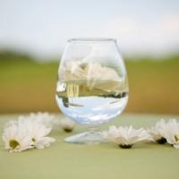 Aaron-Watson-Photography-Sugar-Magnolias-Panorama12-466x310